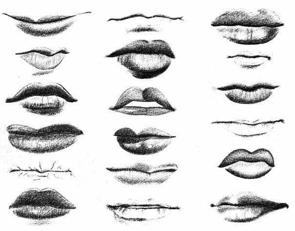Разновидности форм губ