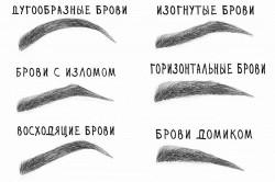 Варианты естественой формы бровей