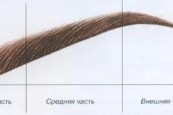 Зоны брови для создания формы