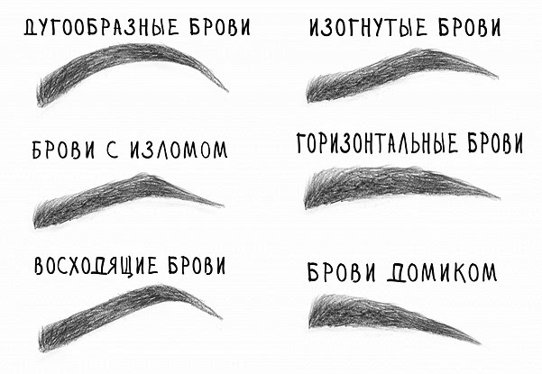 Форма бровей