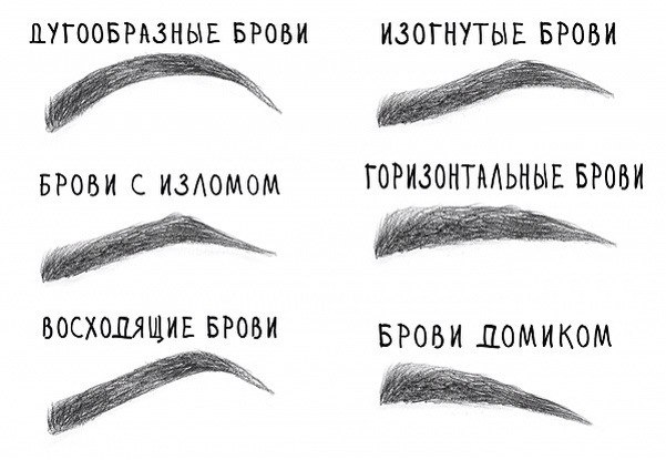 Вид форм бровей
