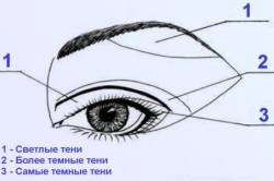 Схема как наносить тональный крем фото 448