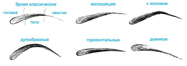 Как нарисовать красивые брови на