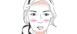 Как скорректировать макияжем вытянутое лицо