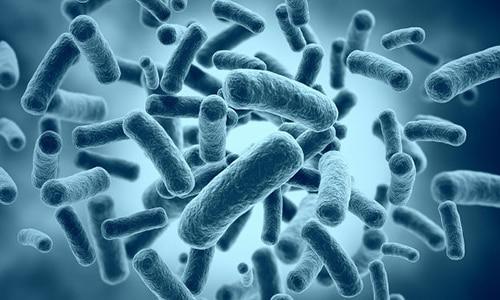 Цистит поражает мочеполовую систему. В основном провоцируют заболевание болезнетворные бактерии, которые находятся в мочевом пузыре