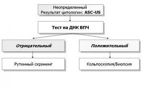 Иллюстрация 3