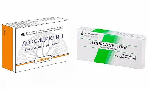 Большое распространение получили лекарства пенициллинового и тетрациклинового ряда - Амоксициллин и Доксициклин